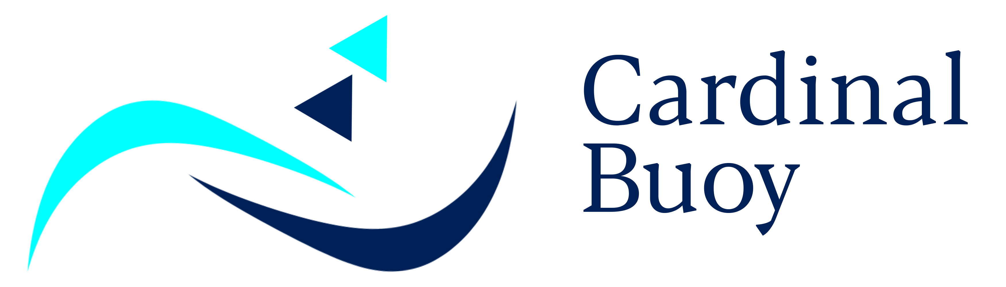 cardinal buoy financials logo